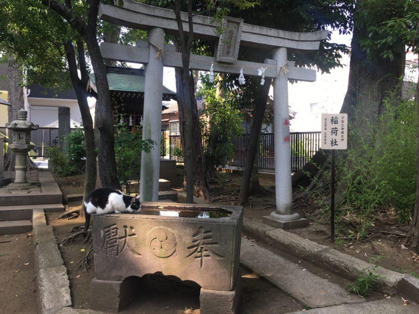 鳩ヶ谷氷川神社 稲荷神社